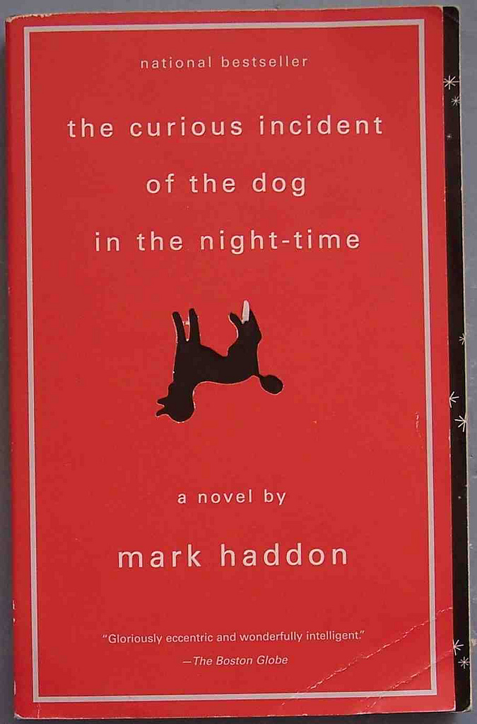 questions the curious incident of the
