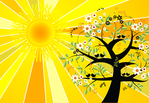tree and sun cartoon of summer solstice